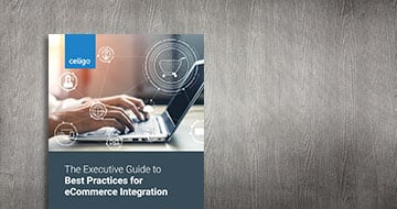 The Executive Guide to Best Practices for eCommerce Integration