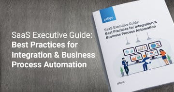 SaaS Executive eBook
